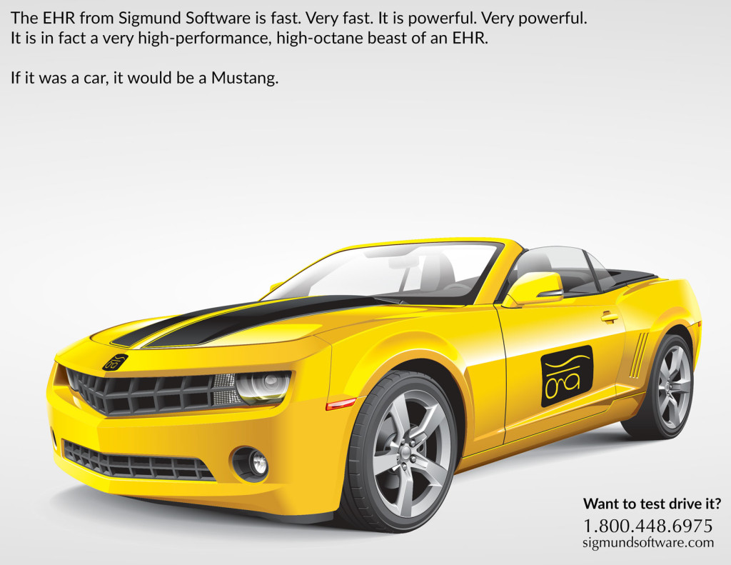 If Sigmund Software was a car, it would be a Mustang